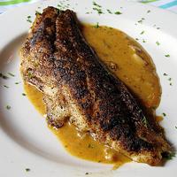Redfish - (Sashimi Grade)