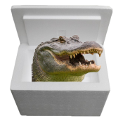 Louisiana Alligator Sampler Cooler