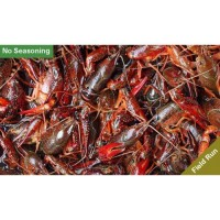 Live Crawfish Field Run Sack - No Seasoning 1 Sack